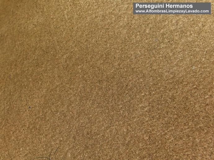 detalle alfombra limpia